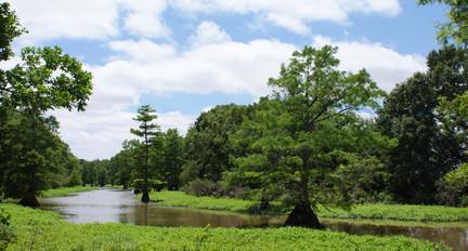 Crooked Creek Bayou