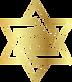 לוגו לוי ציינג'