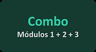 Combo Agile.png