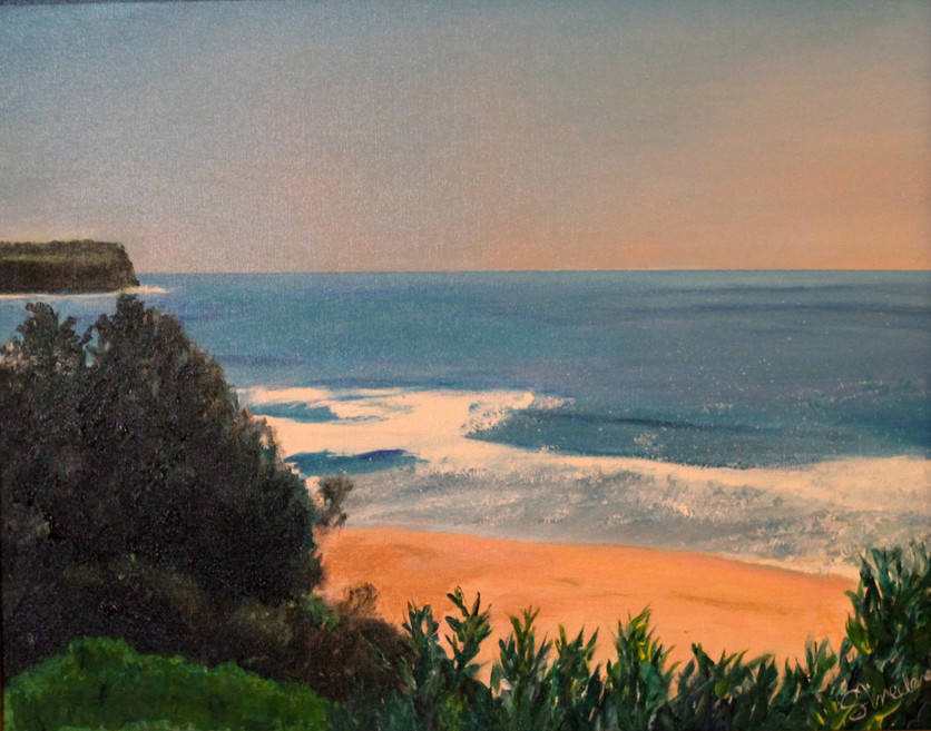 #10_Vreeland_S_ Warriewood beach.jpg