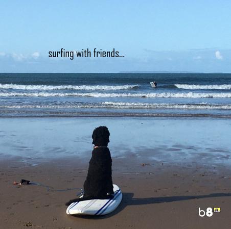 Byron Eight - Surfing