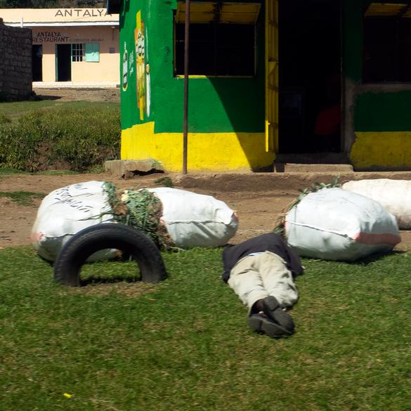 La sieste, Nakuru, Kenya, 2019