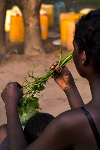 Nourritures, Kilifi, Kenya, 2019
