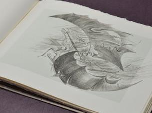 Rasselas, Artist proposes flight to esca