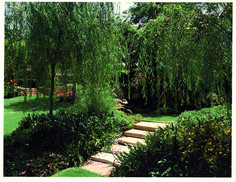 Acker Garden 3.jpg