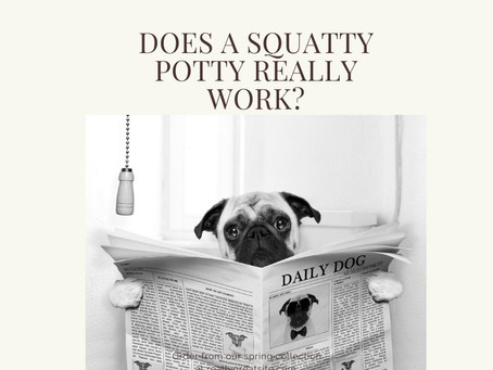 Does a squatty potty really work?