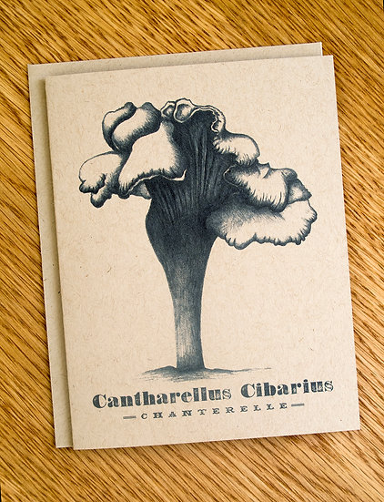 The Chanterelle Note Card