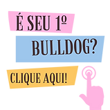 OQUE (1).png