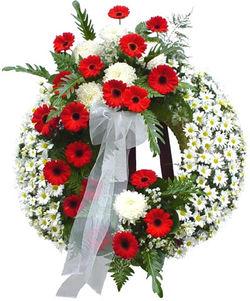 Daisy Wreath - $ 195