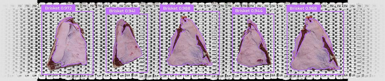 Brisket-Detection.png