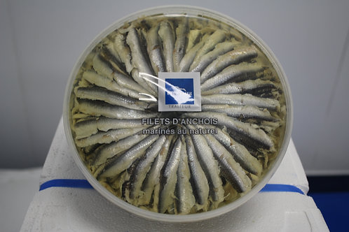Anchovy in oil