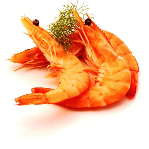 Cooked Crevettes 500g