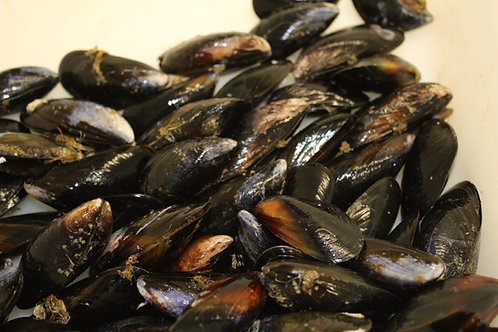 Rope Mussels 1kg