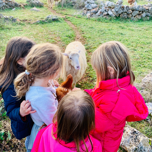 Kids with animals in the Dol plains