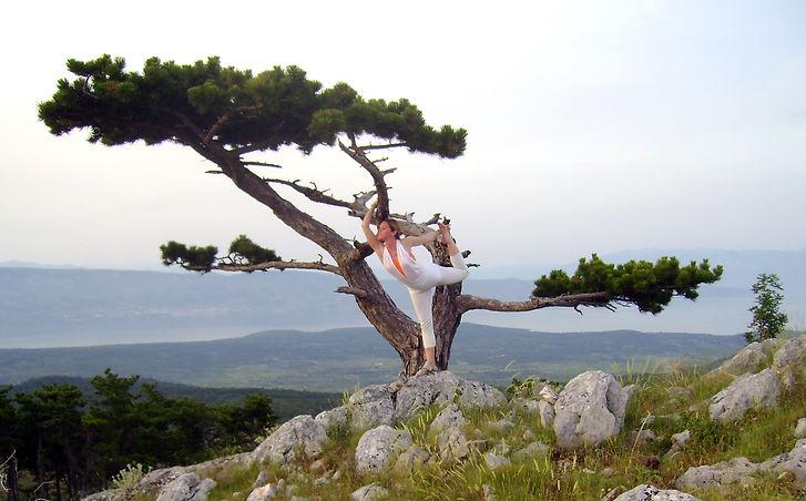 Suncokret Yoga_Hvar.jpg