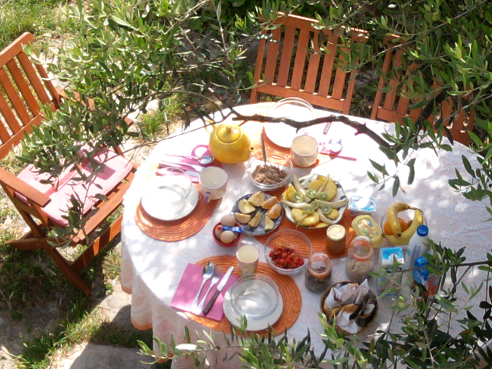 meals_inviting garden table