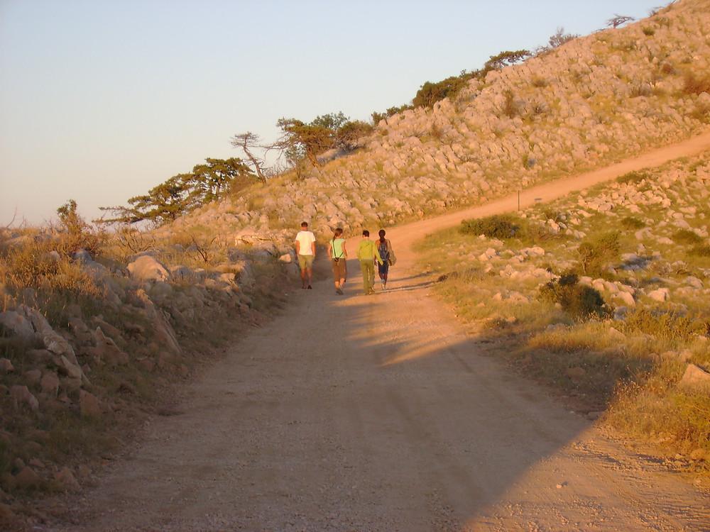 Walking meditation - mindful sensory awareness at Suncokret