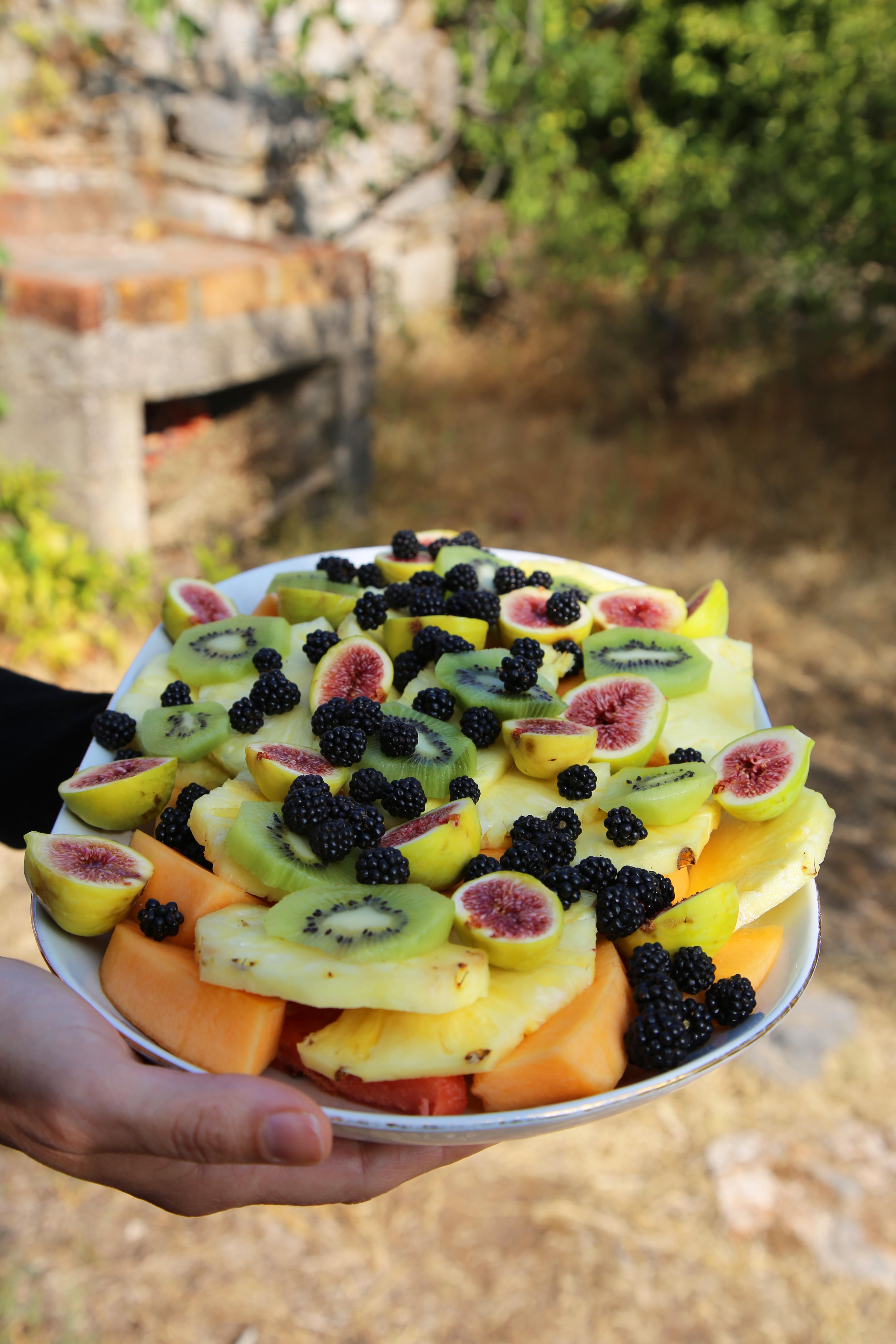 meals_fruits©Photo_Sarah_Freeman