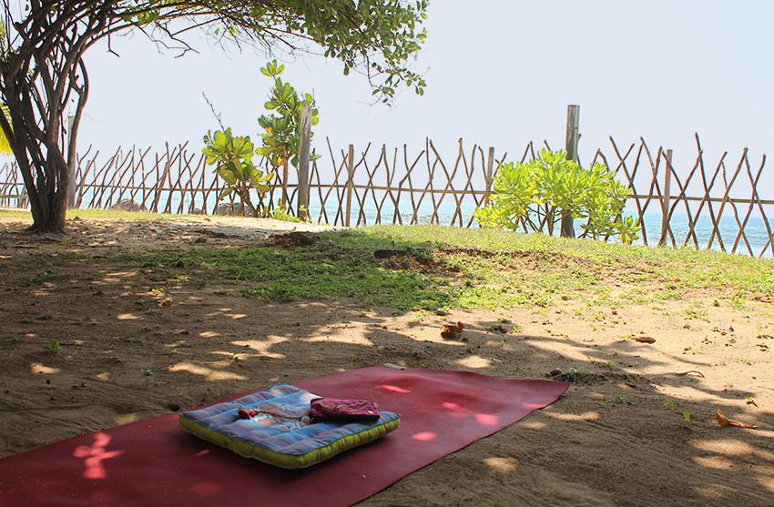 Bare essentials of a yogini