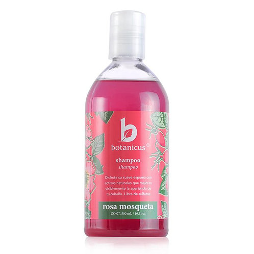 Shampoo de rosa mosqueta