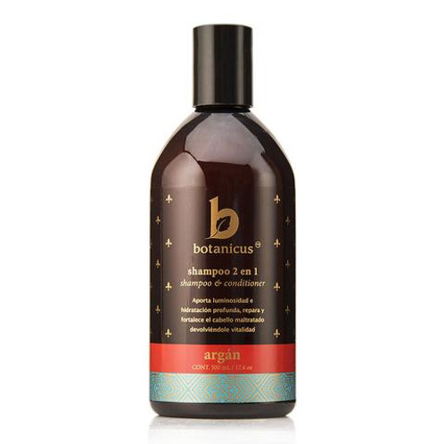 Shampoo 2 en 1 argan