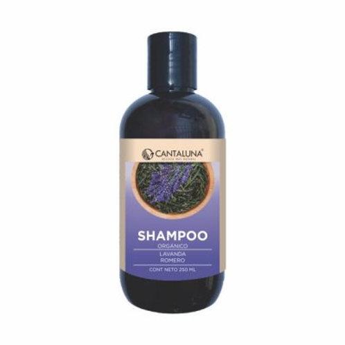 Shampoo lavanda romero