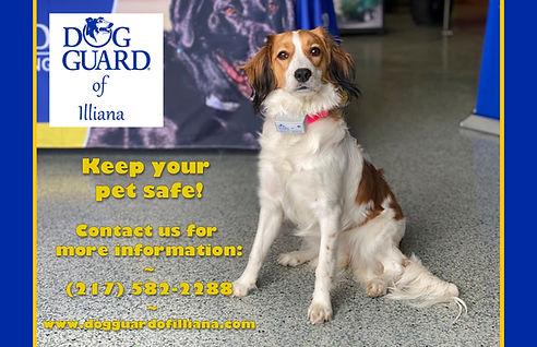 Half page Chronicle Ad - Dog Guard.jpg