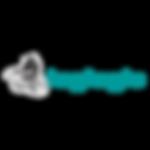 Companies - Loglogic logo.png