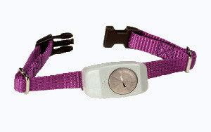 Dog Guard - DGM4 Receiver Collar