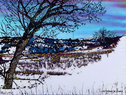 Foothills Snow Scene