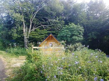 ne-chalet-mont dore-camping grande cascade-nature