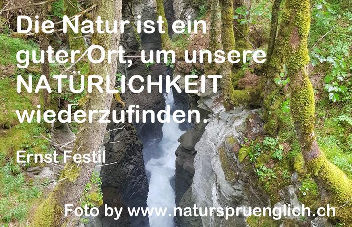 Die Natur ist ein guter Ort.jpg