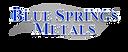 __NEW BSM logo 2015.png