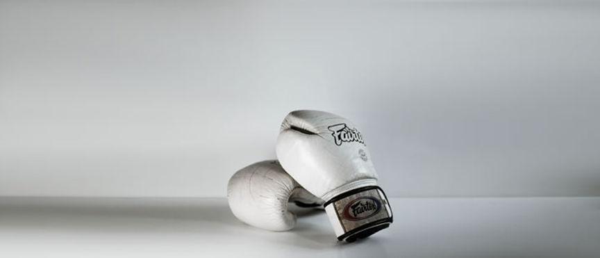 taomovement.net.martial-arts-disciplines