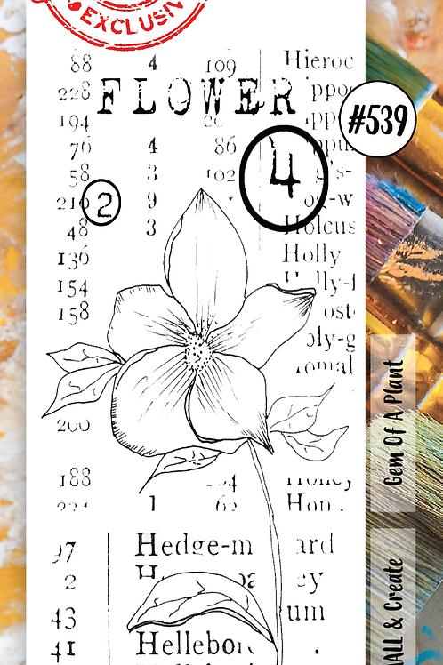 Border Stamp set #539