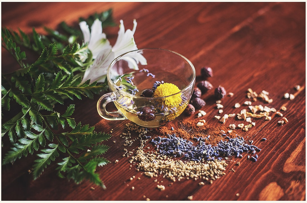 herbs and plants in a cup and on the table