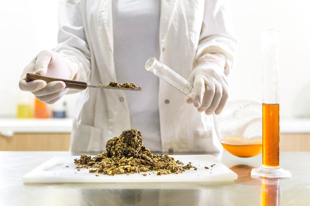 Person in a laboratory, testing ingredients