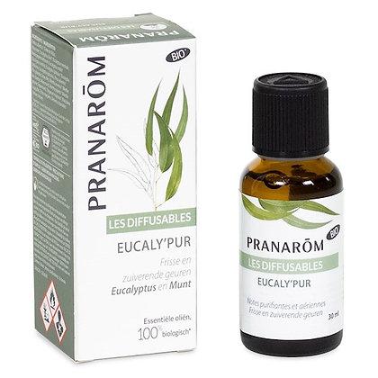 Eucaly'Pur - Mélange pour diffuseur - 30 ml