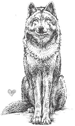 kiss the wolf_edited.jpg