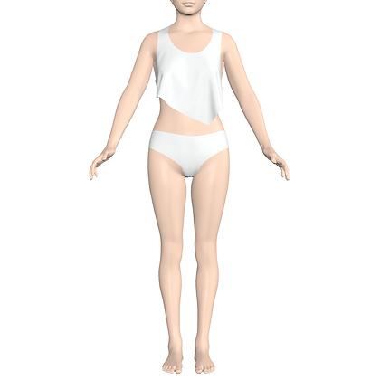 Cropped Top/ Bikini Panty
