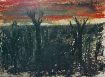 Burnt Forest, 2002