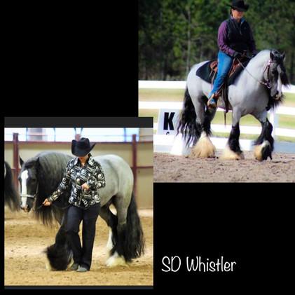 sire: SD Whistler