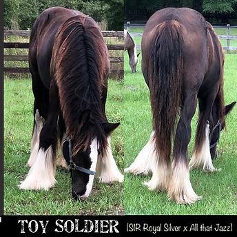 2019Toy soldier.jpg