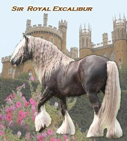 2011 Royal castle v2b.jpg