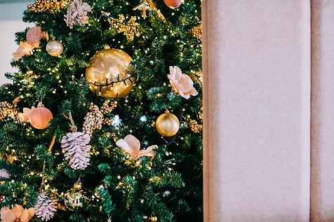 Kerstboonservicenenl2019_43.jpg
