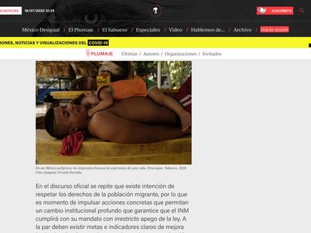 Artículo Publicado en Animal Politico, escrito por Araceli Avila