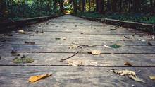 5 Great Lexington Parks w/Both Dirt & Paved Trails