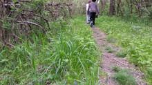 Take A Hike! 10 Reasons To Hike The Bluegrass