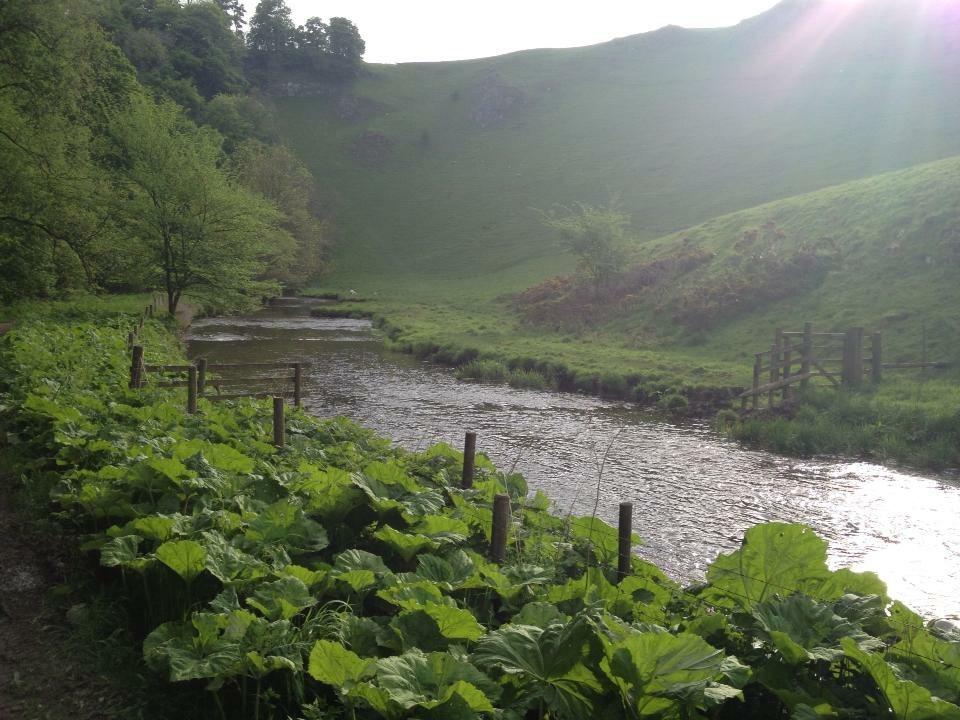 Downstream between the bridges
