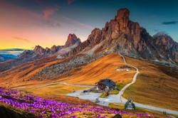 Wonderful alpine scenery with spring cro
